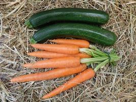 Pepinos y zanahorias sobre un fondo de paja o heno foto