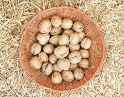 Whole walnuts in a wicker basket on hay or straw background