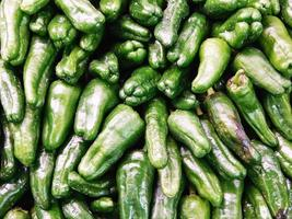 Pile of green peppers