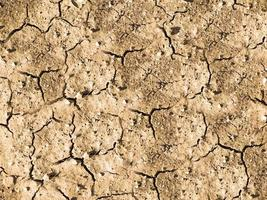Patch of dry and cracked soil