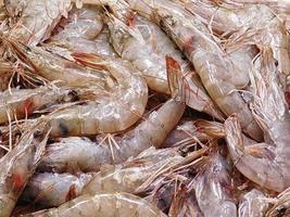 Pile of raw shrimp