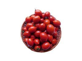 tomates sobre un fondo blanco foto