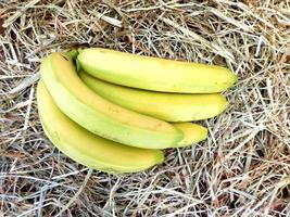 Bananas on a hay or straw background