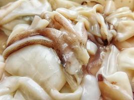 Close-up of raw squid