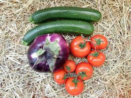 Cucumbers, beet, and tomatoes on a hay or straw background