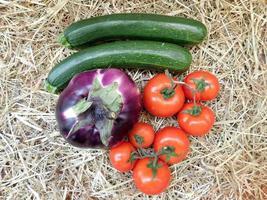 Pepinos, remolacha y tomates sobre un fondo de paja o heno foto