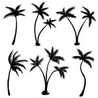 Coconut palm tree silhouette illustration vector