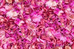 Dried flowers and leaves background photo