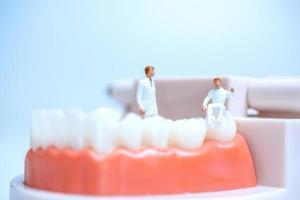 Dentistas en miniatura dentro del modelo de dientes humanos con encías