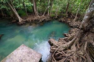 Beautiful blue pool in Thailand photo