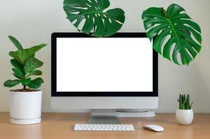 Desktop view with keyboard and plants photo