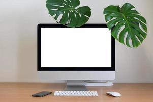 Monstera plant and desk top on minimalist dek photo