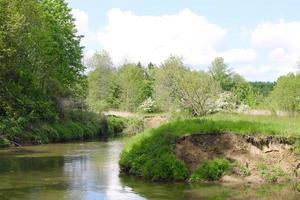 Nature reserve in Belgium photo