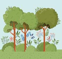trees and leafs with bush landscape scene vector