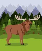 Moose animal and pine trees design vector