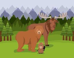 Canadian animals design vector