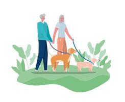 Senior citizen couple walking dogs vector