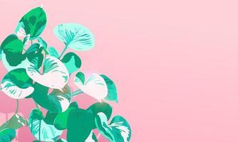 Summer vibe Araceae plants on pastel pink background, flat minimal modern retro, vintage style, minimal hot sunday feeling vector