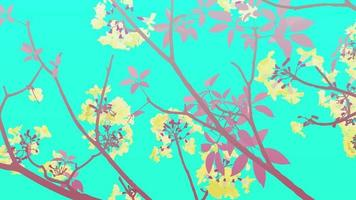 Branch of rosy trumpet, pink poui Tabebuia rosea blossoming. neotropical tree. Vector illustration on neon bright green background