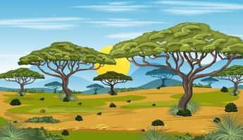 African forest landscape background vector