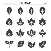 Leaf Solid Glyph Icon Set Illustration Vector EPS 10