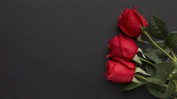 Red roses on a black background photo