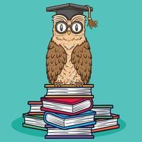 bird animal owl sitting on books illustration vector