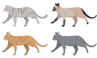 Set of different cats side view. vector