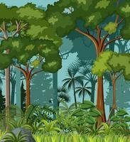 Escena de la jungla en blanco con lianas y muchos árboles. vector