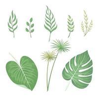 hojas vector acuarela