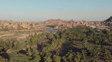 vuela sobre palmeras con río y colinas de fondo. hampi, karnataka, india. video