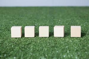 Wood blocks on grass