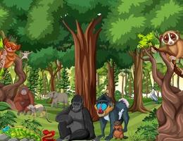 escena de la selva tropical con animales salvajes. vector