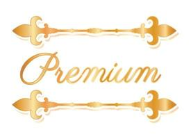 Gold luxury divider ornament vector