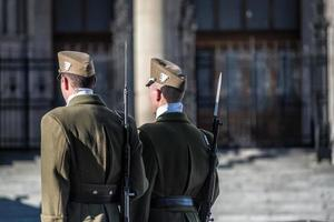 Budapest 2019-- Guards of honor at Hungarian Parliament photo