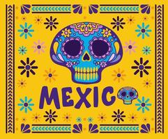 Mexico lettering with skull with colorful frame vector