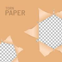 Ripped paper holes vector