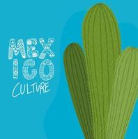 Mexico culture lettering with cactus vector design