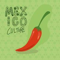 Mexico culture lettering with chilli vector design