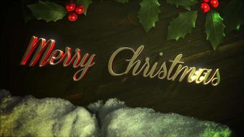 Animation de gros plan texte joyeux Noël, neige blanche et branche de Noël vert sur fond de bois video
