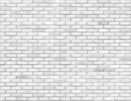 White brick background texture. Vector illustration.