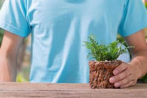 persona plantando árboles en macetas, concepto de amor, las plantas aman el medio ambiente foto