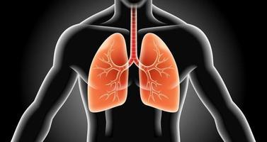 ilustraciones de vectores de rayos x de pulmón.
