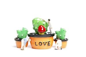 Miniature painters coloring plants in a pod with the word love, Valentine's Day concept photo