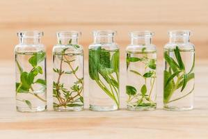 Fresh herbs for essential oils in bottles photo