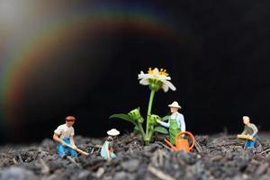 Jardineros en miniatura cuidando el cultivo de plantas en el campo, concepto de medio ambiente