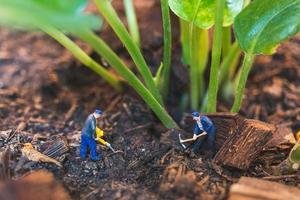 Trabajadores en miniatura que trabajan con un árbol, protegiendo el concepto de naturaleza foto