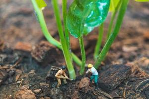 Miniature workers working with a tree, protecting nature concept photo