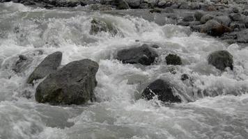 Betrachten Sie Flussszenen im Wald, im Nationalpark Dombai, im Kaukasus, in Russland video