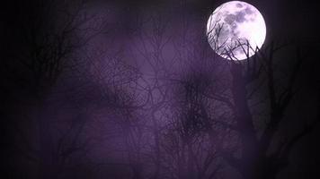 mystisk animation halloween bakgrund med mörk måne och moln video